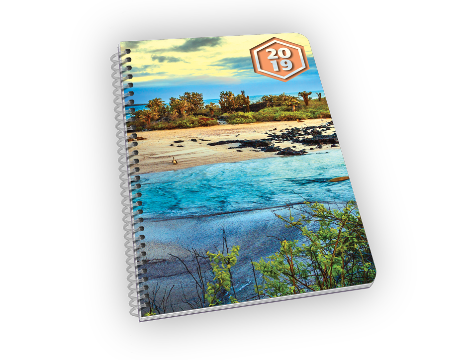 Spiral-bound planner with beach and foliage cover.