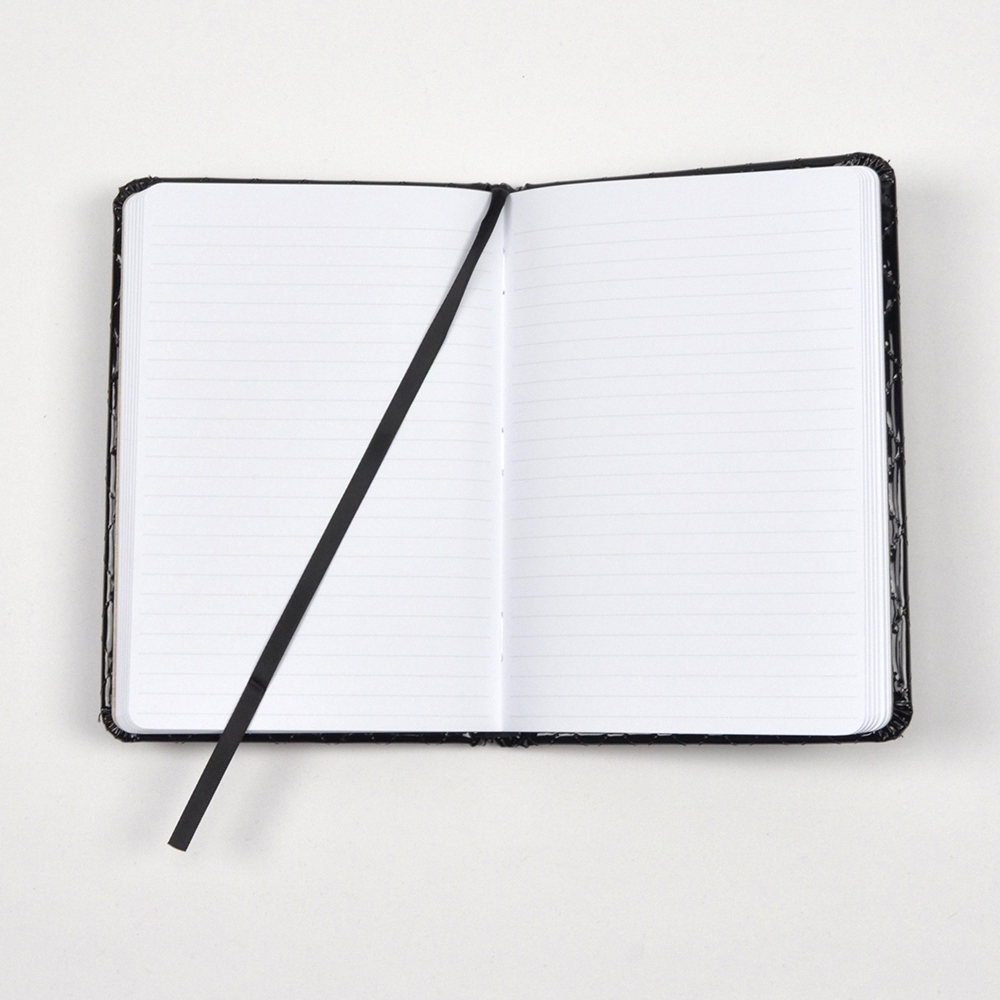 Open journa with lined pages and ribbon.