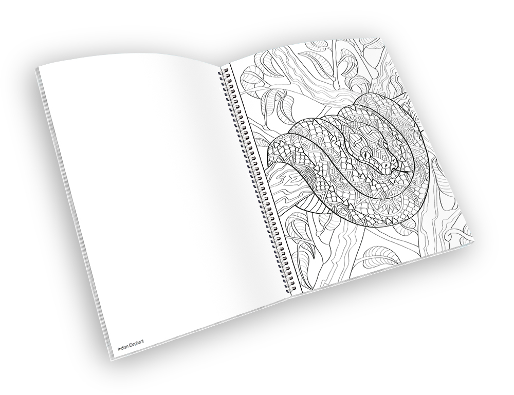 Open spiral-bound coloring book with a snake outline.