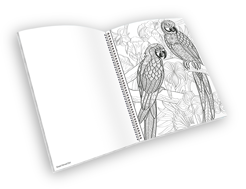 Open spiral-bound coloring book with a parrot outline.