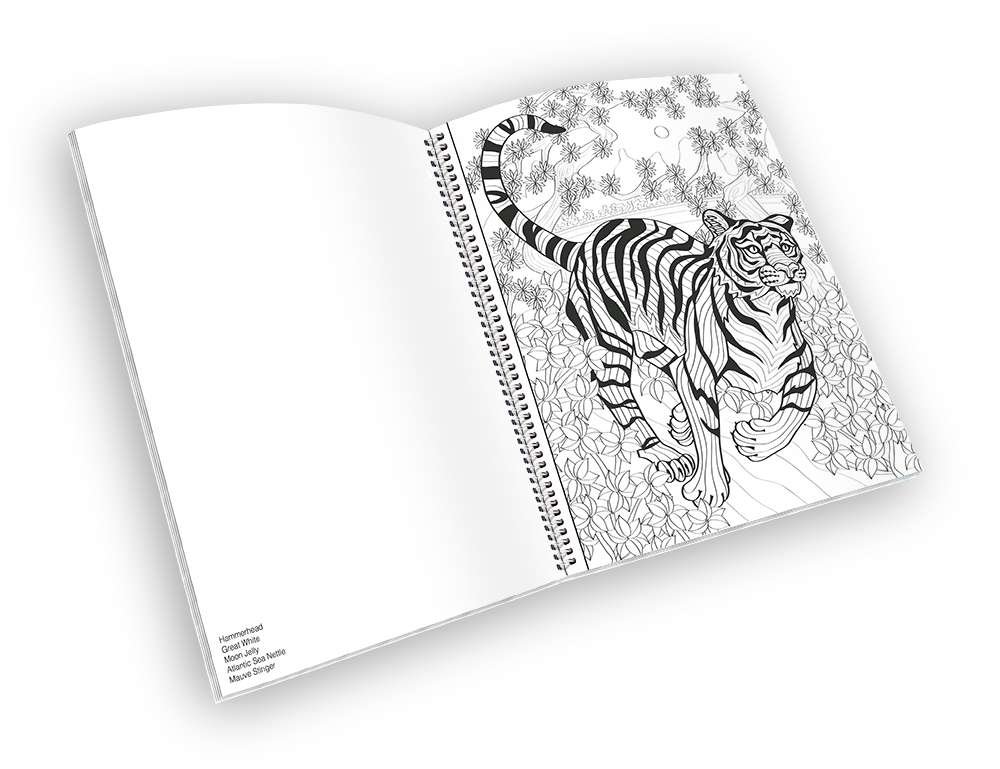 Open spiral-bound coloring book with a tiger outline.